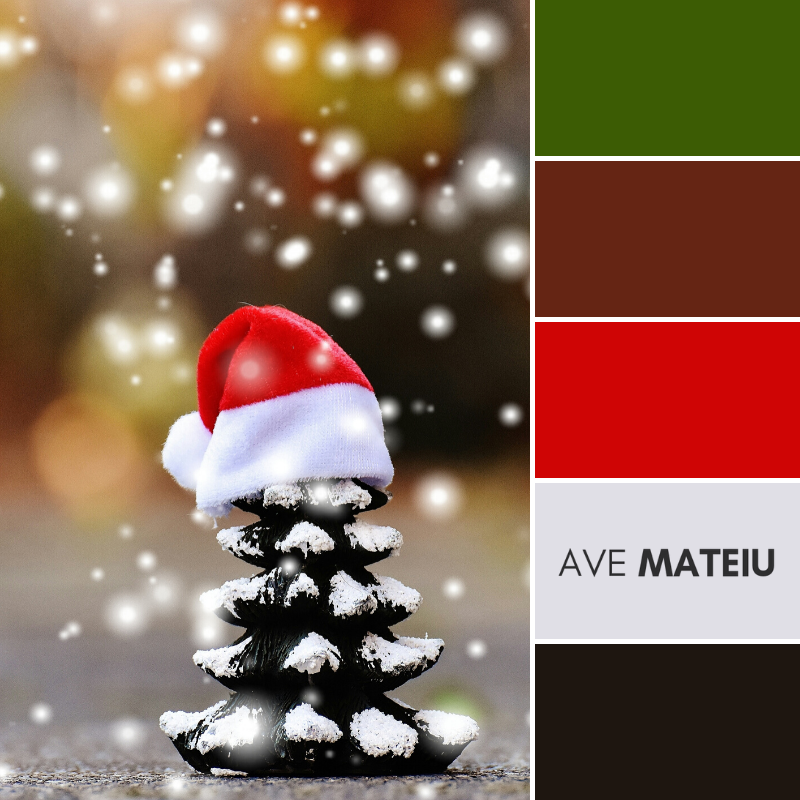 Conifer Cone Wearing Christmas Hat Color Palette 365 Ave Mateiu